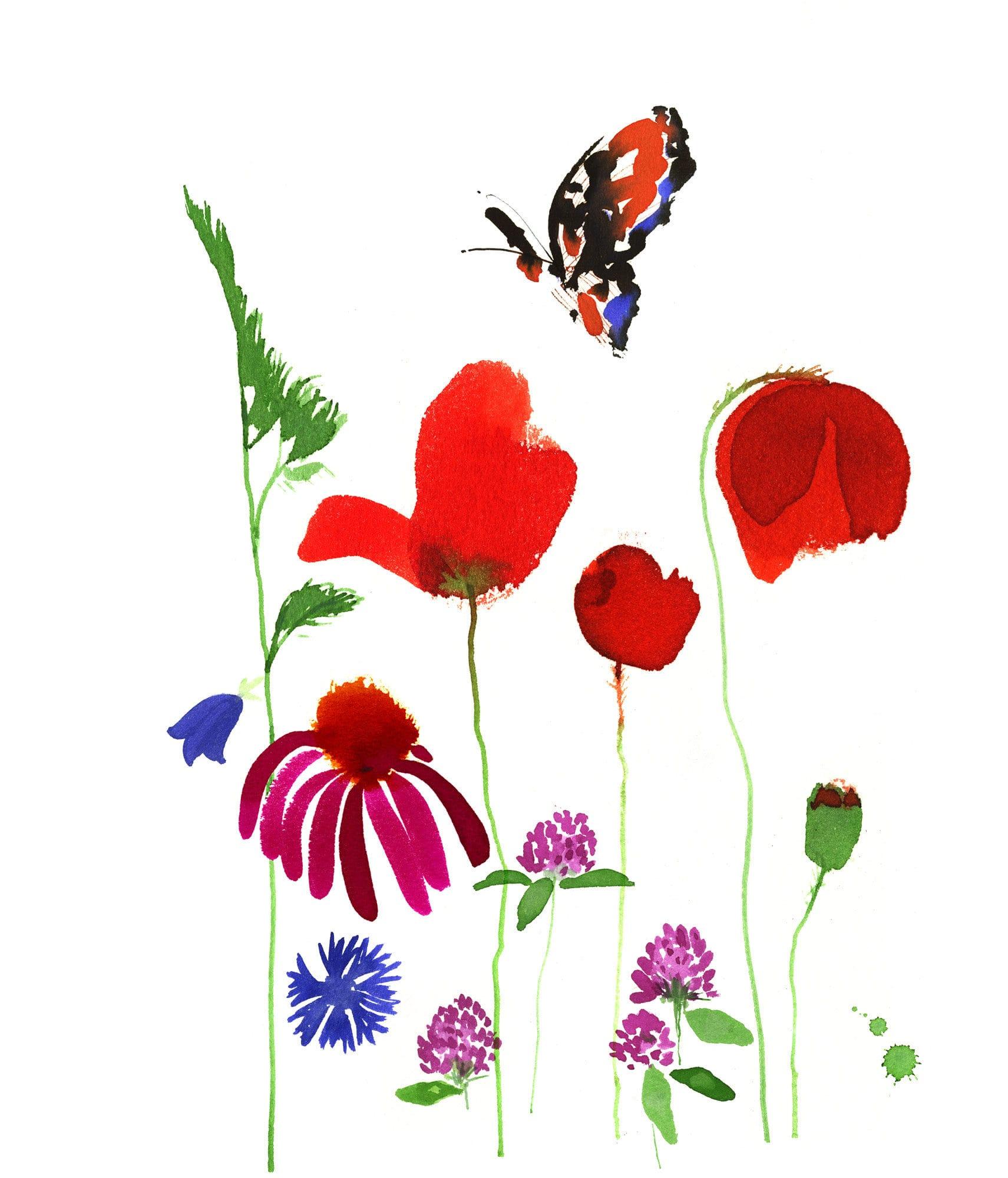 Lovisa Burfitt illustration Summer flora