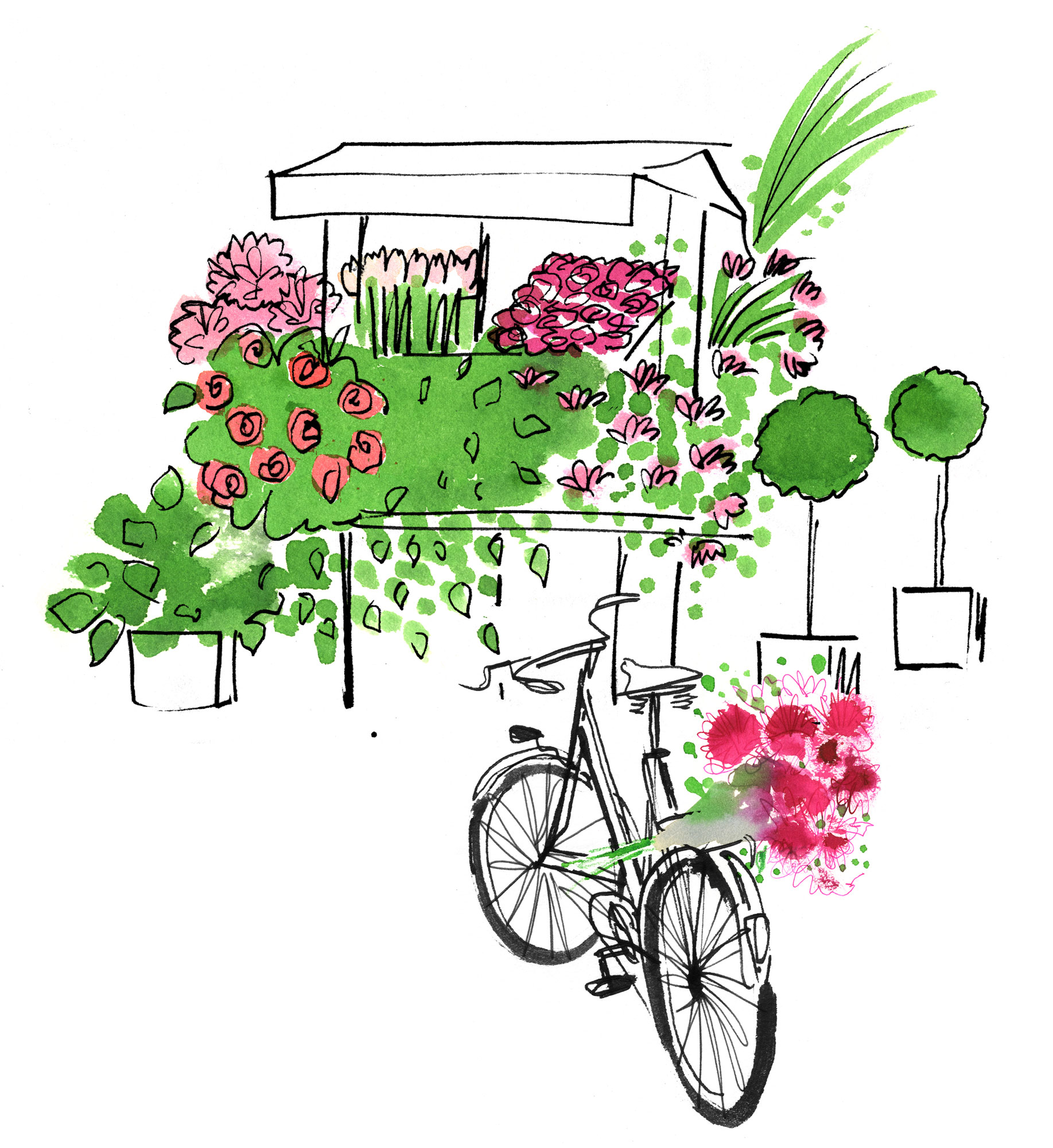Lovisa-Burfitt-illustration-Green-kiosk-velo