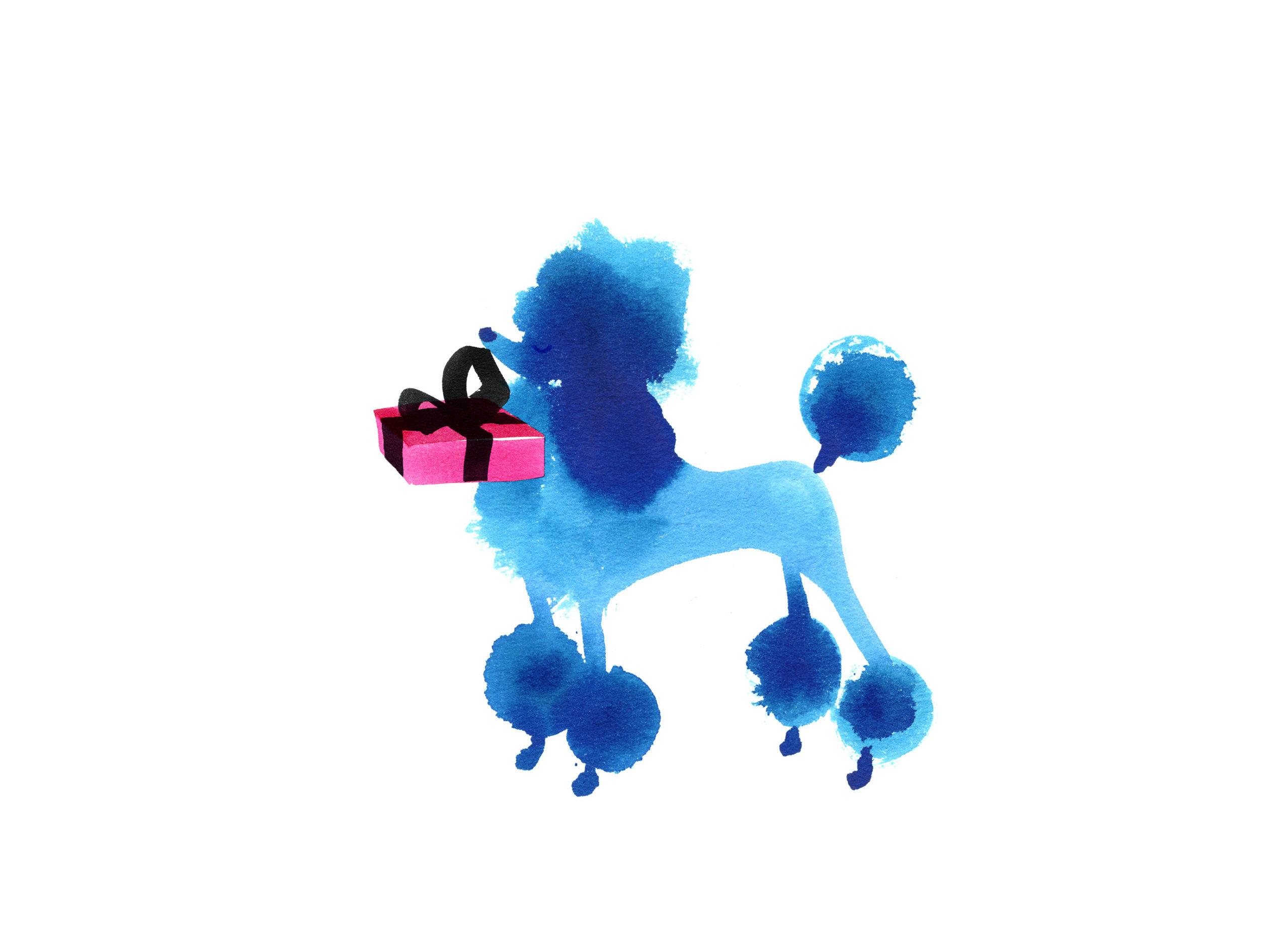 Lovisa-Burfitt-illustration-Poodle-azul